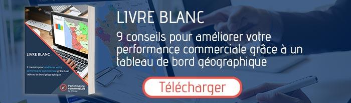 télécharger livre blanc performance commerciale